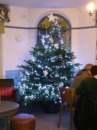 Leamington Spa, UK: Xmas Tree!