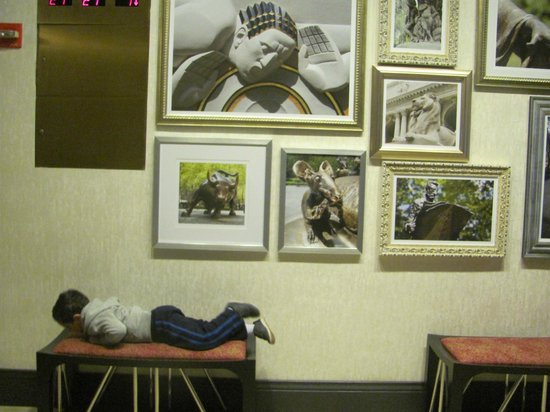 Courtyard by Marriott New York Manhattan / Midtown East: PASILLO A LOS ASCENSORES(MI hijo descansando en los sillones)