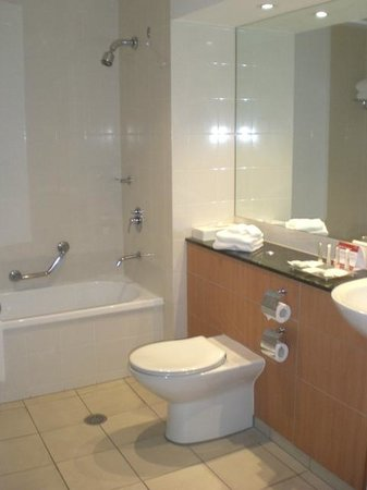 Crowne Plaza Newcastle: 321 toilet and shower