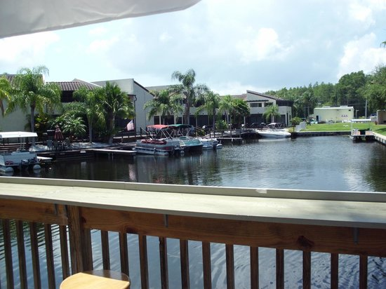 Palm Harbor, FL: room view