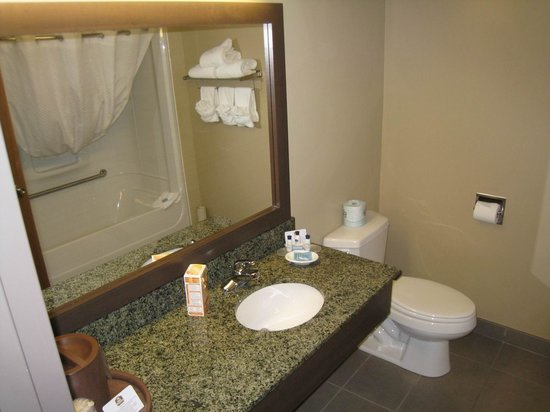 BEST WESTERN PLUS Saint John Hotel & Suites : Bad