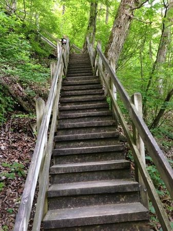 Camdenton, MO: 316 steps down to the spring. Going down and then right back up isn't the easiest thing you'll e