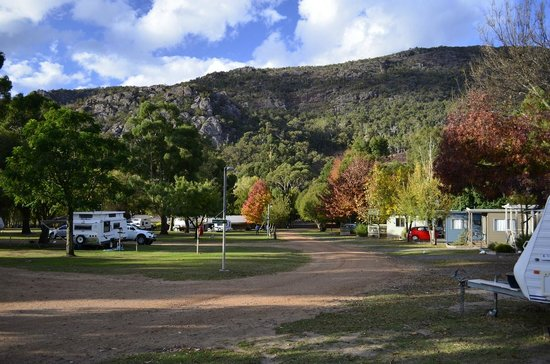 Halls Gap, Australia: The main street in the park: Wildlife Hwy