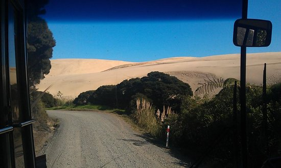 Kaitaia, Nueva Zelanda: Sand dunes at top end of 90 mile beach
