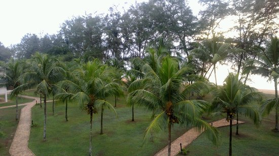 Impiana Resort Cherating: View from the room