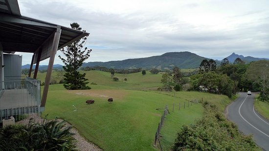 Murwillumbah, Australie : View from cafe veranda, up the Tweed, to Mt Warning