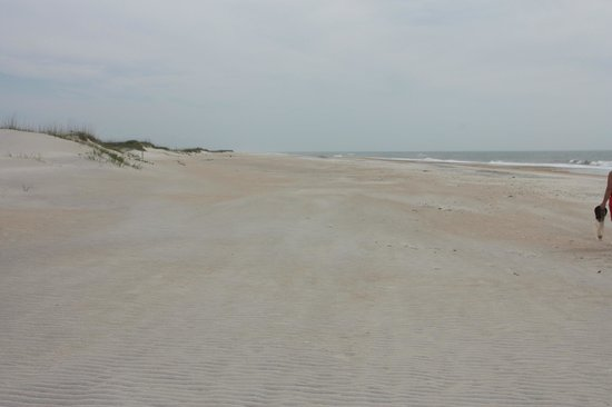 Ocean side beach for Harkers island fishing report
