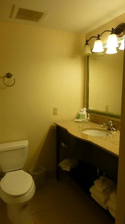Country Inn & Suites By Carlson, Cool Springs: Bathroom Sink