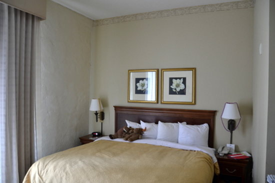 Country Inn & Suites New Orleans: Standard Kingsize room