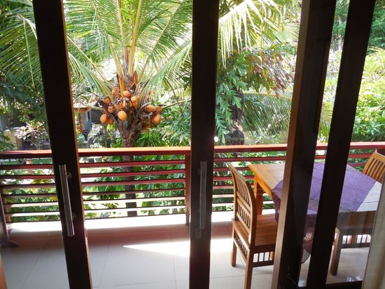 Ubud Dream: view from our bed...great place to have breakfast!