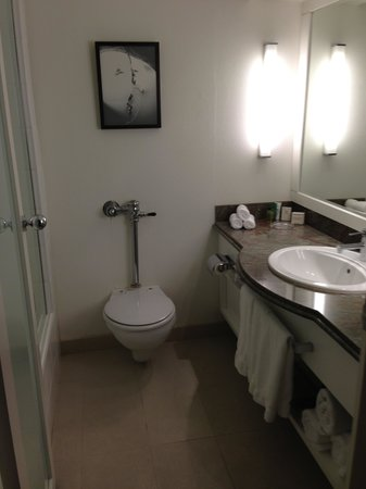 Hilton On The Park Melbourne: Toilet area - flush system not 5 star quality