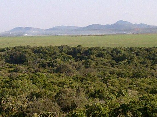 Jeffreys Bay, Afrique du Sud : View from a room facing the Kouga mountains