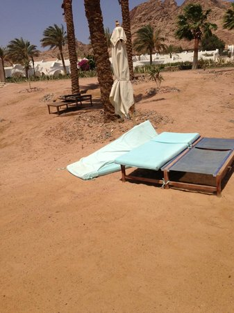 Le Meridien Dahab Resort: matter in the sand of the beach