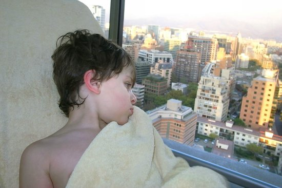Radisson Plaza Santiago Hotel: Small but usefull swimming pool for kids