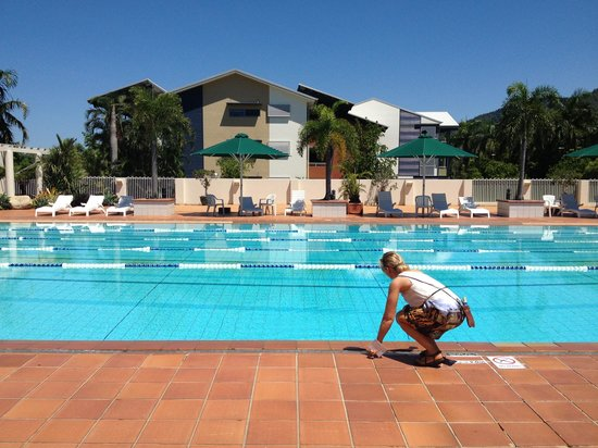 Palm Cove, Australia: Olympic pool - nearly fell in checking the water, it was great so I wouldnt have minded  :)