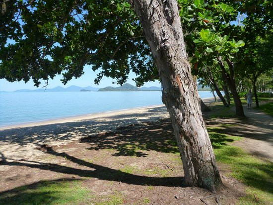 Palm Cove, Australia: the beach , just down the road and directly across the road from dinning and shopping- great are
