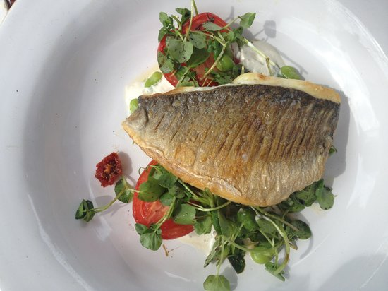 Ascot, UK : Sea Bream
