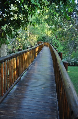 Skukuza, Güney Afrika: Wooden walkways