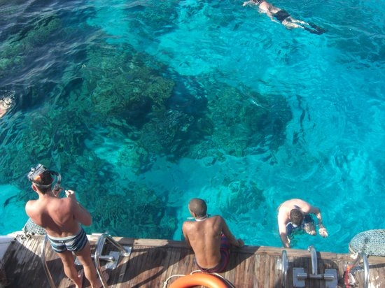 Coral Sea Holiday Village: Diving with the hotel, worth every penny