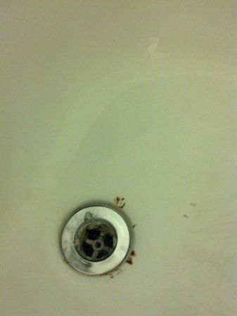 ‪‪Millennium Hotel Cincinnati‬: Drain Leaking Hot Water So Long It's Alive‬