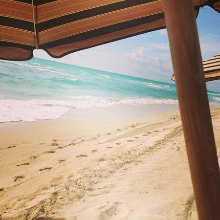 Canyon Ranch Hotel & Spa Miami Beach : The Beach and very soft sand!