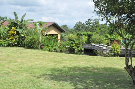 Arenal Springs Resort and Spa: Alrededor de la habitacion