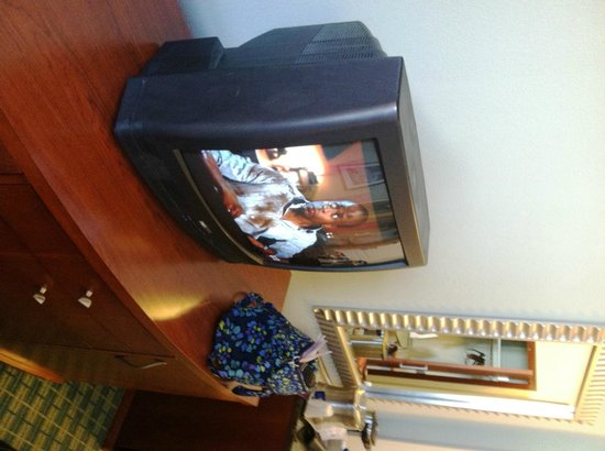 Hilton Fort Lauderdale Airport: The small, older TV