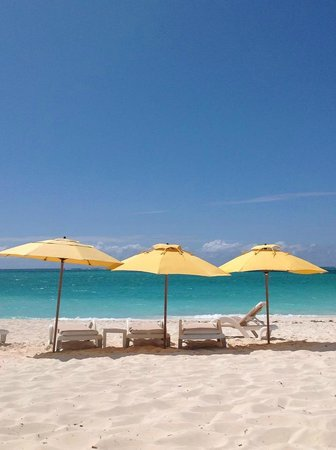 Alexandra Resort: Umbrellas and Chairs
