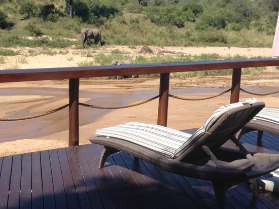 Jock Safari Lodge: View from the Pool