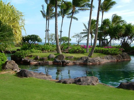 Grand Hyatt Kauai Resort and Spa: And more...