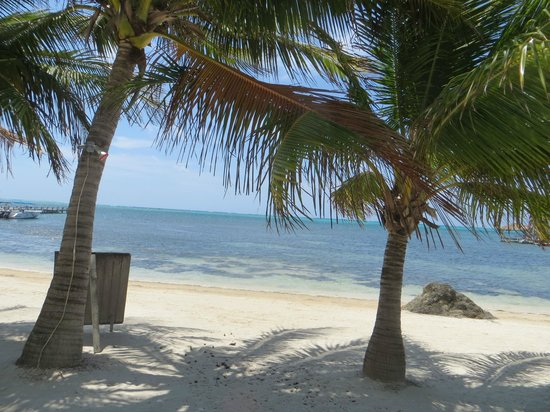 Exotic Caye Beach Resort: Now look at the beach