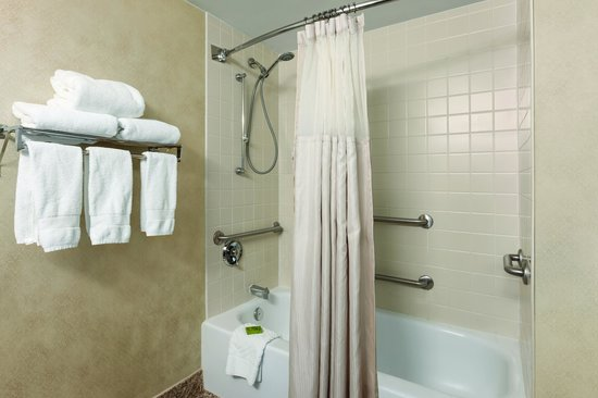 Embassy Suites Hotel Syracuse: Accessible Bath