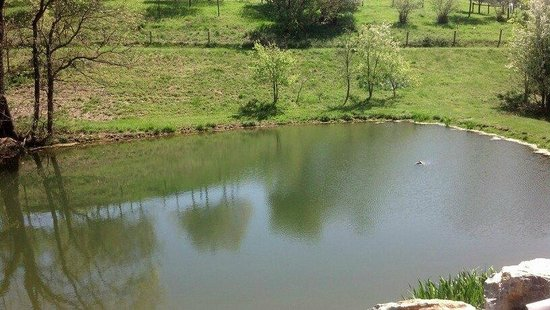 Fogelsville, PA: pond next to Main Barn