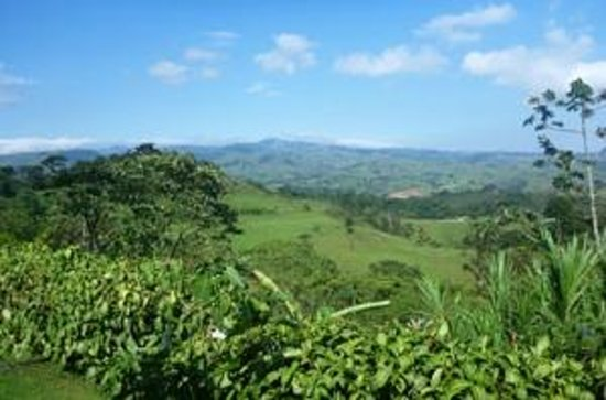 San Ramon, Costa Rica: View from Cabin #15
