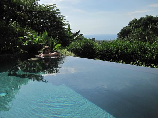 Damai: From our private infinity pool overlooking the lush jungle toward the ocean