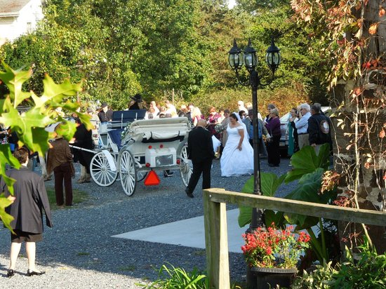 Battlefield Bed and Breakfast Inn: Carriage rides and weddings available