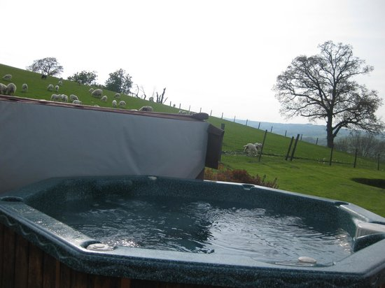 Llanidloes, UK: The hot tub