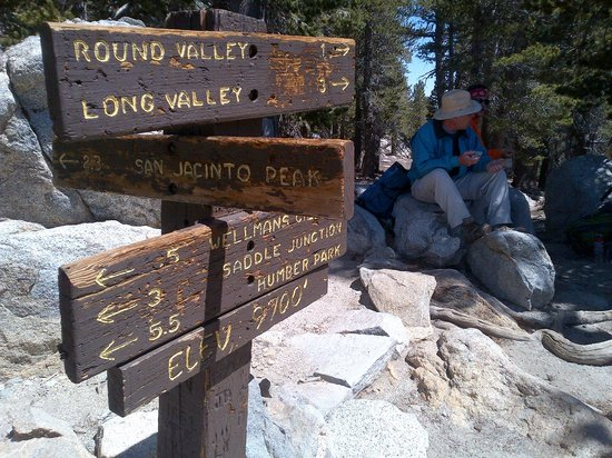 Idyllwild, CA: A trail junction at Wellman's Divide, 9700' altitude. From here you can head to the summit.
