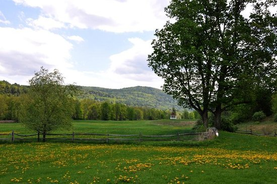 Chester, VT: Our Meadow