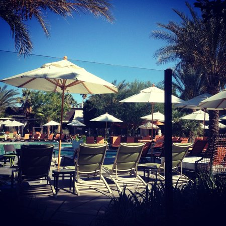 Riviera Resort & Spa, Palm Springs: Pool View from Circa 59 Patio