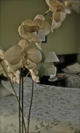Twentynine Palms, CA: Decor of room, simple and hormy with artistic touches