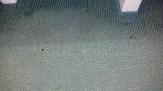 เดสโมนส์, วอชิงตัน: camera phone does not do the floor's dirtiness any justice