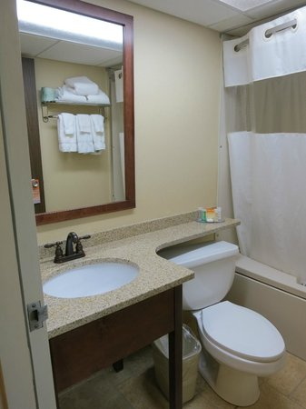 Howard Johnson Plaza Portland: The sink area