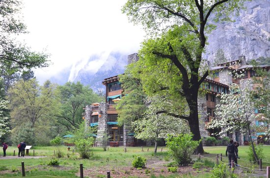 The Ahwahnee: View from my room