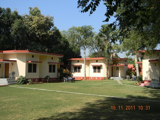 Photo of Ankur Resort Ranthambhore Sawai Madhopur