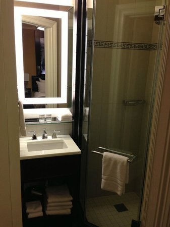 The Algonquin Hotel Times Square, Autograph Collection: Small bathroom