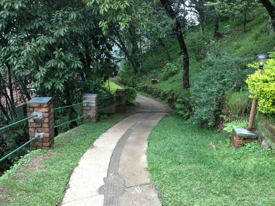 Blackberry Hills Retreat & Spa: Pathway