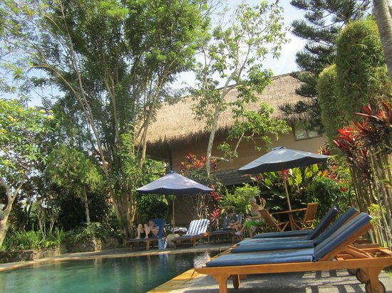 Tegal Sari: swimming pool