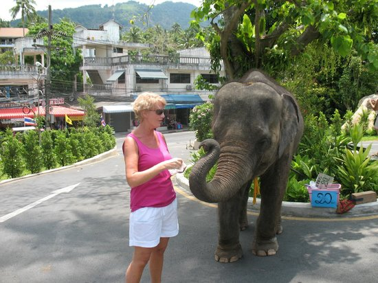 Avista Phuket Resort & Spa: what a lovely girl - come and see me - bring bananas