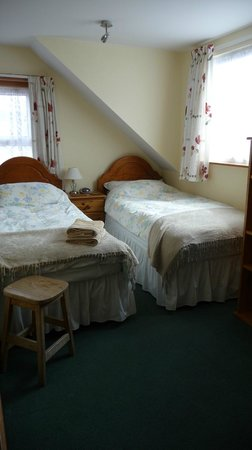 Greenwood Guest House: Room 4 - standard twin room